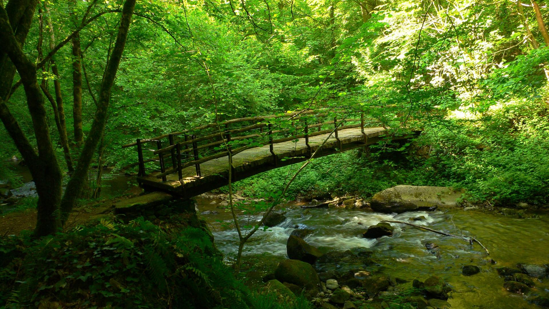 A chaque instant de notre vie, un pont se présente à nous pour traverser vers l'autre rive de la conscience. N'hésite pas, explorateur de l'esprit, passe le pour être pleinement toi-même.